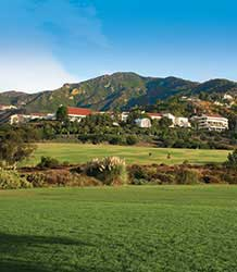 Grass on the Malibu campus - Pepperdine University